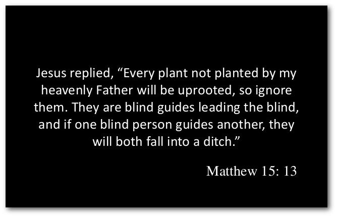 Matthew 15:13 :: non-duality