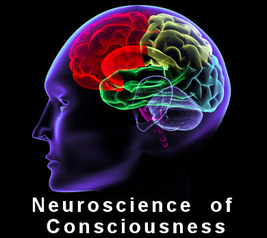 Neuroscience of Consciousness